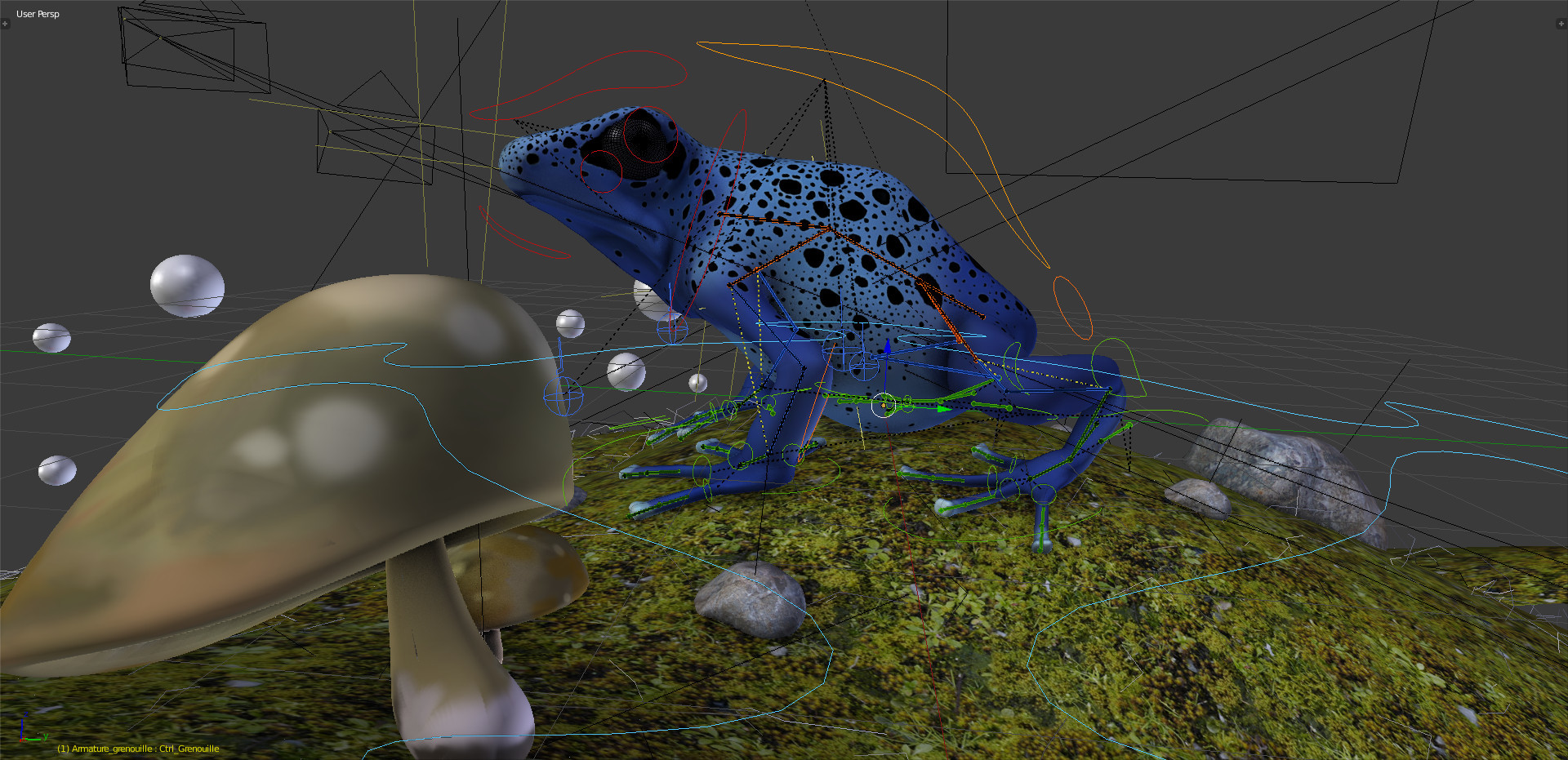 /images/graphisme-3d/animaux/grenouille/grenouille_screenshot