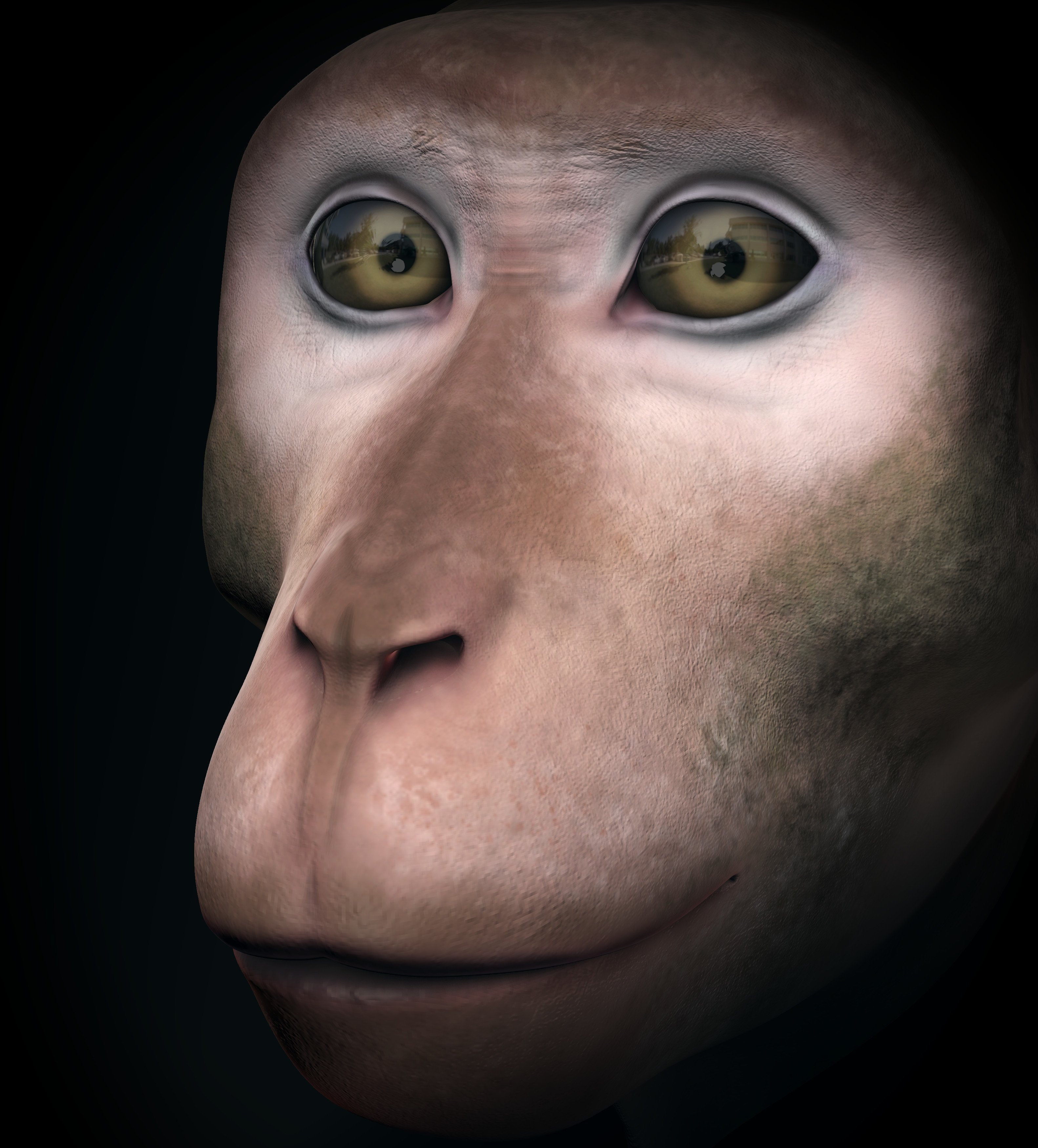 /images/graphisme-3d/animaux/macaque/screenshot_macaque_screenshot-17_01_01