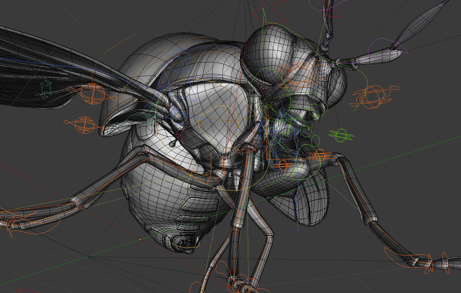 images/graphisme-3d/insectes/celyphidae