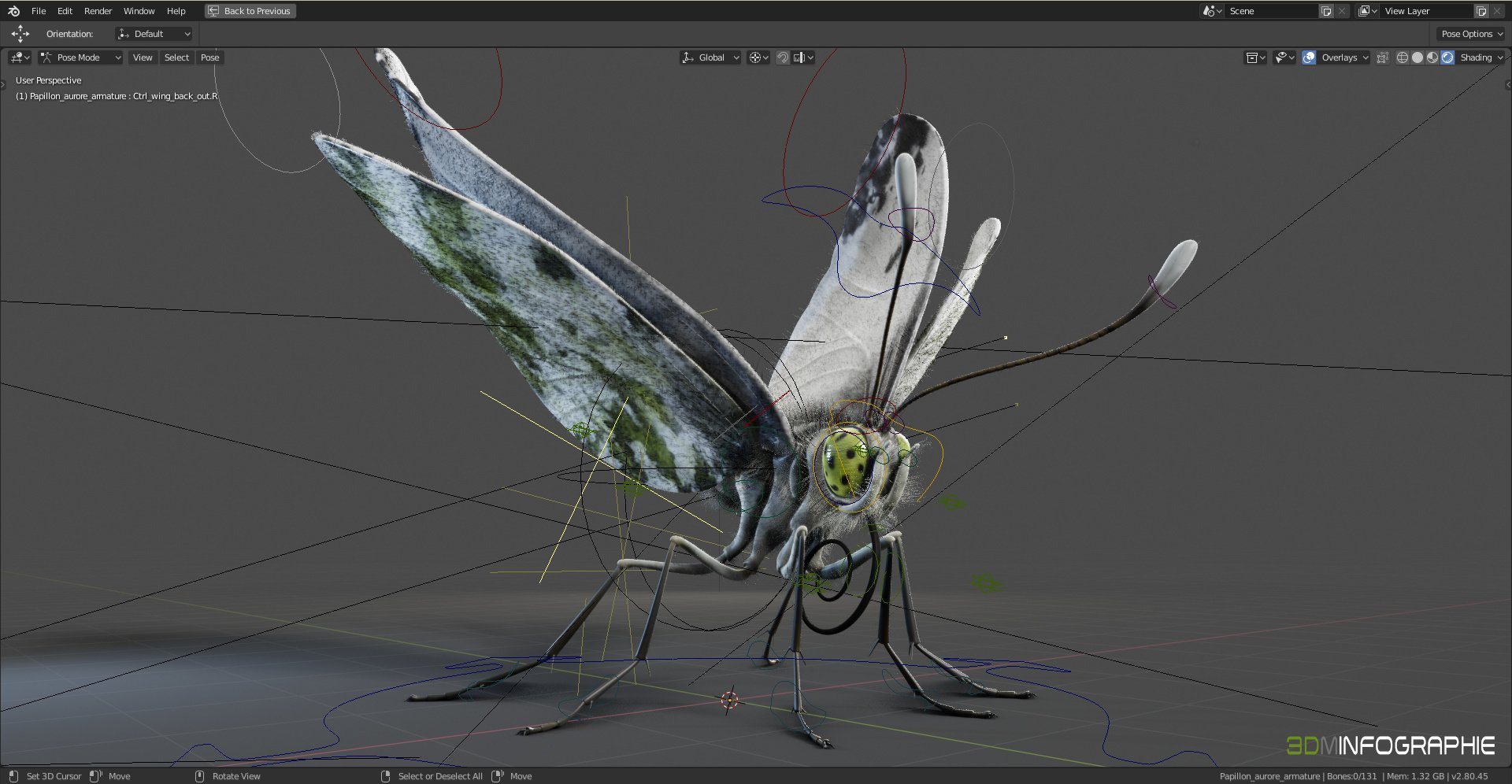 /images/graphisme-3d/insectes/papillon_aurore/screenshot_butterfly-00
